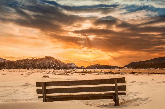 A bench in winter-Getty-FINALE