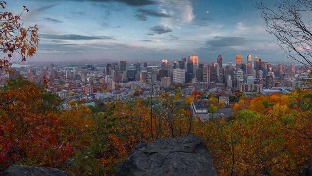 Montreal_skyline_automn_view_16X9_DRI